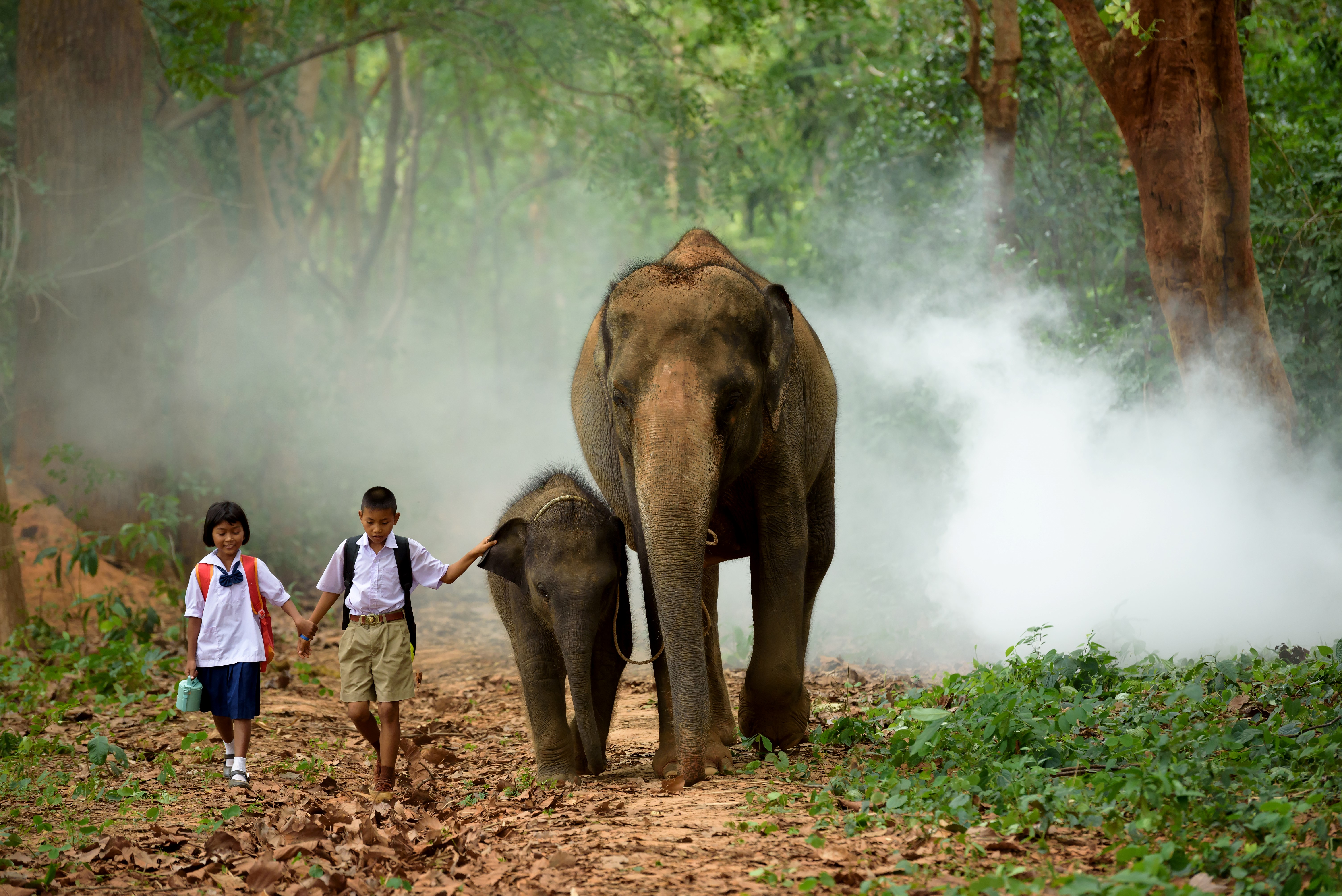 family things to do in thailand